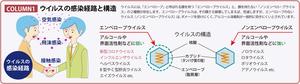 コロナウイルスパンフ4.png